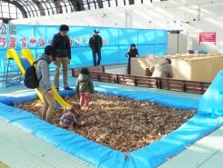 今年もフカフカの落ち葉プールがオープン