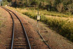 のどかな風景の中を走る信楽高原鐵道。雪の日は幻想的な景色に変わる
