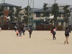 天気も良く、凧をあげて、走る子どもたち