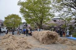 14日(木)、15日(金)には「八幡まつり」がある。春の訪れを告げるまつりの準備がされていた