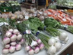 他にもおせちや鍋で大活躍する冬野菜がいっぱい!