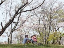 うららかな春の陽気に誘われ、公園でのんびりと過ごす人が多かった