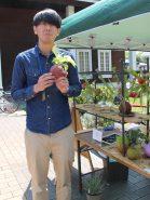 能登川町の特産品である麻を使ったオシャレな観葉植物