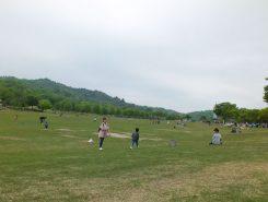 希望ヶ丘文化公園 スポーツゾーン 大きな芝生広場があるので家族連れに人気