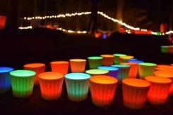 様々な色に変化しながら辺りを照らす透光陶器