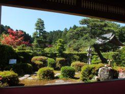 ここから見える庭もなかなか見ごたえがある。小堀遠州によるものではないが、江戸時代末期に作庭された