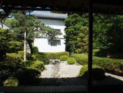 控えの間から見える庭は蓬莱山を表現した庭園。土蔵の白壁が庭の明るさと広さをもたらす借景になっている