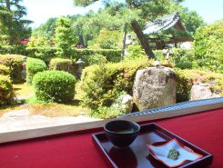 庭を眺めてゆったりと過ごす贅沢な時間  (抹茶セット有料)