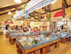 地元の新鮮な野菜や特産品が揃う