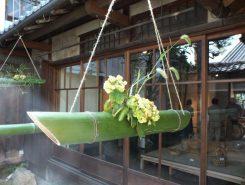 派手さはないが、竹の凛とした美しさを感じる