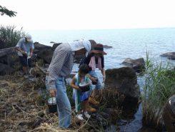 洗米は琵琶湖の水で(水質調査をしているので、問題無いとのこと)。仕上げには浄水を使う
