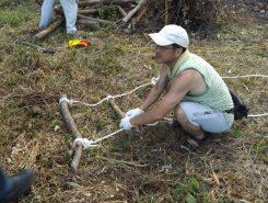 こちらはロープと枝でハシゴ作り