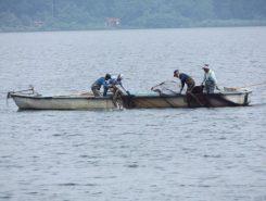 沖島の漁師さんが地引網を仕掛けていく