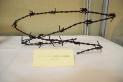 ブッヘンバルト収容所(ドイツ)有刺鉄線