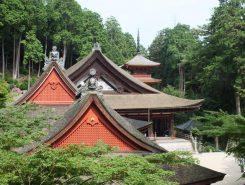 長命寺に来たらぜひ見てほしいのがこの景色。連なる屋根が美しい