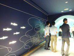 水族展示のデザインもリニューアル。水槽は照明操作などで季節や昼夜を細かく調整している