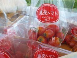 トマトをプレゼント!