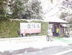向かいの慶雲館では盆梅展が開催中