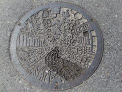 実は近江八幡市・・・道路にも桜があるんです♪