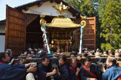 境内奥にある神輿が仕舞われている神輿庫から勢いよく神輿が担ぎだされる。迫力がすごい!