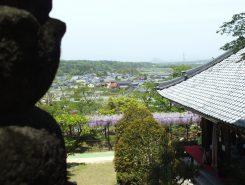宝塔からは日野町鎌掛地区を一望できる