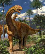 ①トゥリアサウルス 復元画