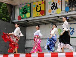 京都産業大学Las☆Estrellasによるフラメンコショー