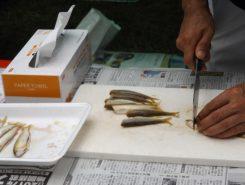 佐久良川で捕まえた鮎を調理中