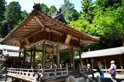 うつくし松は松尾神社の御神木となっている