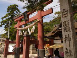 白鬚神社の鳥居から本殿へ