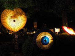 和傘も灯りを通すと