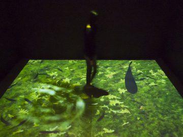 ⑤《黒い魚たち》 藤本直明