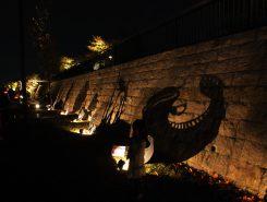 琵琶湖の生き物の影絵