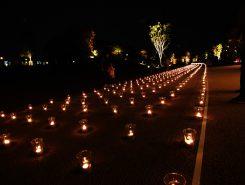 4000個の灯りがともった「あかり銀河」