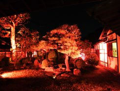 本陣内の中庭はオレンジ色の光に包まれた