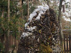 さざれ石についた氷が水晶のよう