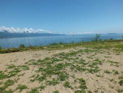 琵琶湖が見えて気持ちがいい