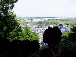 トトロの岩の上から新幹線や在来線が見える