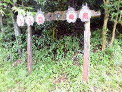 「トトロの森」への入り口