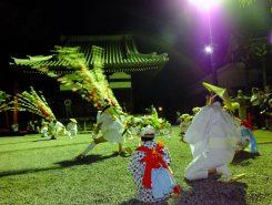 花傘をかぶりアヤ竹(竹の筒に小豆を入れたもの)を振りながら踊る