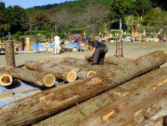 直径36センチの杉の丸太台風で倒れた木も活用