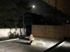 月の光の中で、坐禅、瞑想、寺ヨガ