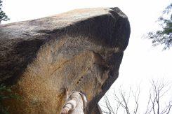 かつては三雲城の見張り台として使われた