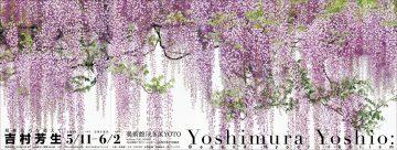 yoshimura_01