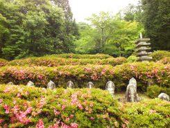 本堂の裏山に並ぶ33体の石仏