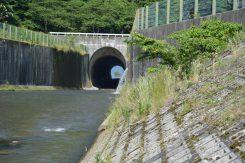 奥に琵琶湖が見える