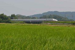 新幹線が付近を走る