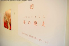 「陶雛展」はOgama 1階奥にて開催中