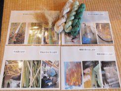 竹から繊維を取り出し、綿と同比率で混合するとやわらかくしなやかな糸になる