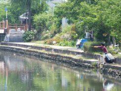 なにか釣れるのかな?7月20日には幸円橋付近で魚つかみ大会も開催される。現在エントリー受付中!